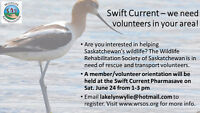 Wildlife Rescue Volunteers Needed!!