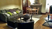 Beautiful 4 1/2 Apartment in the heart of downtown;McGill Ghetto
