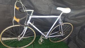 Italian Road Bike Bianchi (Yonge Line or Fairview)