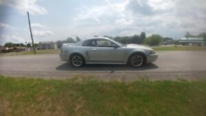 Ford Mustang  GT  V8 !!! 2001  UNE BOMBE   a-1 !!!