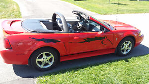 2000 Ford Mustang cabriolet ( échange Mustang 2005, hard top )