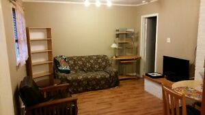 Awesome Large One Bedroom Now Available in Avondale St. John's Newfoundland image 2