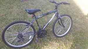 Next mounting bike