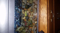 Fish tank 10L  with lighted top,heater,filter, and Oxygen pump