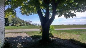 Lakeview site - Beautiful - 3 Season London Ontario image 9