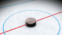 Looking for Hockey Players - Grimsby Mens League