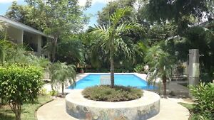 Playa Del Coco condo for rent