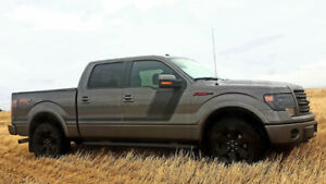 2014 Ford F-150 SuperCrew FX4 Appearance Package -  Pickup Truck