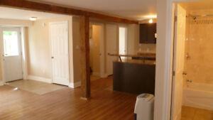 Bright 3 bedroom basement apartment
