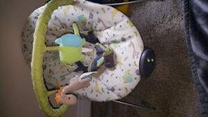 Baby bouncer chair need gone