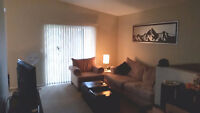 Looking for a Roommate for Jan. 1st - Near Capri Mall