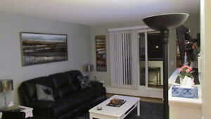 Furnished Two Bedroom Condo Available