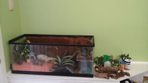 Terrarium or Crabitat For Sale