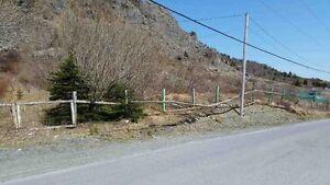 166-176 Butlerville Rd - Bay Roberts, NL - MLS# 1131545 St. John's Newfoundland image 4