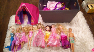 Lot of Barbie and Ken dolls. Plus lots of accessories