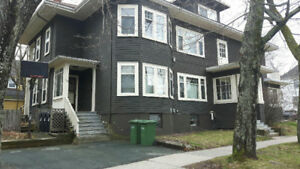 1 Bedroom available in a 3 bedroom apartment. Across Dalhousie