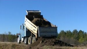 DUMP TRUCKS FOR HIRE !!!