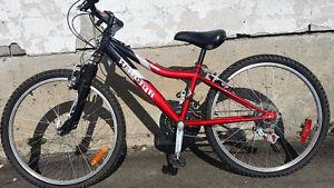 Raleigh Vélo de montagne pour Jeunes: