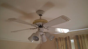 Ceiling Fan in good working condition