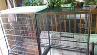 Large double exotic bird cage