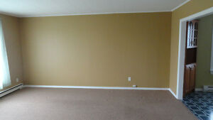 2-Apartment home for sale in Holyrood!! St. John's Newfoundland image 4