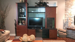 Entertainment Unit/Display Cabinet Kitchener / Waterloo Kitchener Area image 2