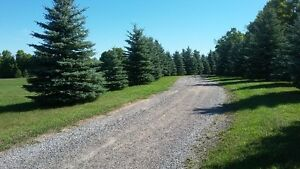 5 acres of land available for rent plus a huge workshop/storage Peterborough Peterborough Area image 4