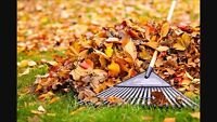 Fall Clean Up, Snow Plowing, Lawn Cutting....