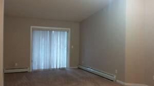 Spruce Grove brand new 2 bedroom available immediately Edmonton Edmonton Area image 4