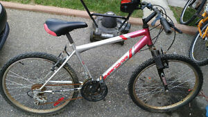 18 speed adult supercycle mountain bike!!!  24 inch wheels.
