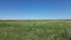 Excellent Farm Land for Sale in RM Lumsden