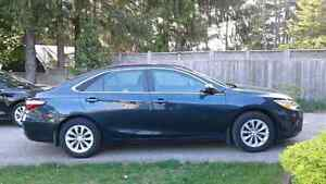 Toyota camry crazy lease cheap buy out