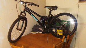 Selling a mongoose mountain bike