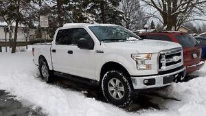 2015 Ford F-150 Pickup Truck xlt 4x4