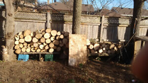 cheap firewood for sale ash, willing to barter