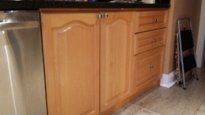Wood kitchen cabinets with solid doors