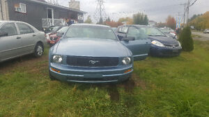2005 Ford Mustang Very low km Coupe (2 door) Gatineau Ottawa / Gatineau Area image 2
