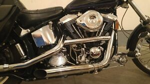 Very nice HD FXSTC EVO with ONLY 24750 kilometers
