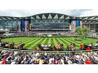 ASCOT 23RD JULY KING GEORGE VI WEEKEND - 6 KING EDWARD VII ENCLOSURE TICKETS