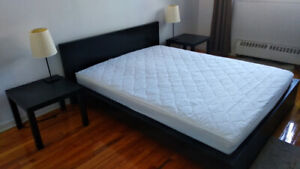 Bed Frame IKEA MALM+IKEA Mattress(with cover)-230$(Queen size)