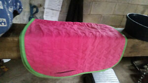 Billy Cook breast collar,english saddle pads & more..need to go! Cambridge Kitchener Area image 3