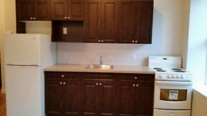 2 Bedrooms apartment near HSC UofM