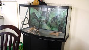 Aquarium 60 gallons