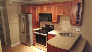 Furnished 1 Bdr. Apt. in St.  Sauveur available from February  1