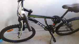 24 inch mountain bike for sale