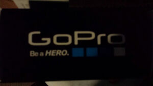 go pro session. Chest mount. Head mount. 64gb SD card