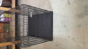 Large wire dog kennel