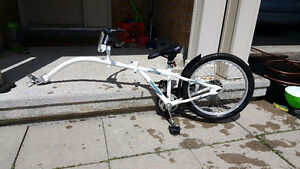 WeeRide Copilot Trailer Bike - gently used