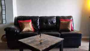 Furniture /sectional/couch