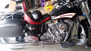 Ultimate Solo Seat With Backrest for 2006 HD Softail